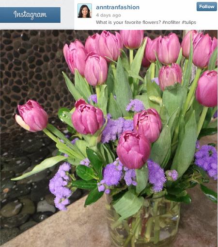 flowersInstagramAddictorStoryTeller450