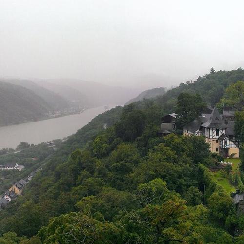 CastleHotelSchoenburgfog