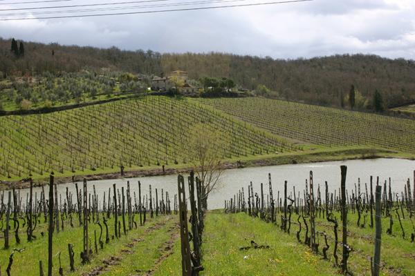 TuscanyTripAdvisor
